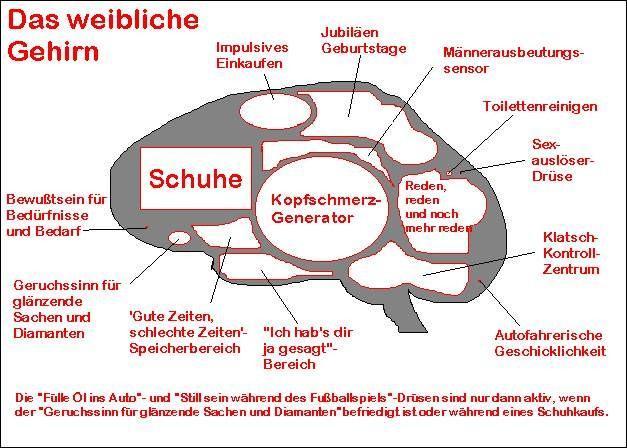 Gehirnwe.jpg